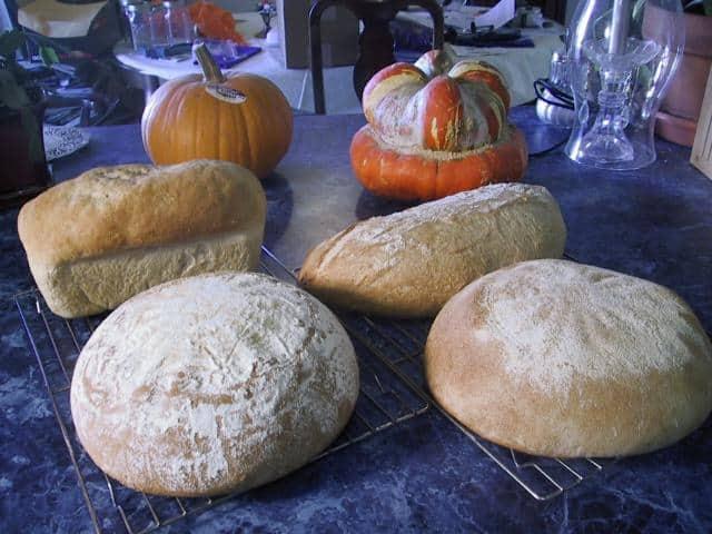 20% Bran Breads Family Portrait