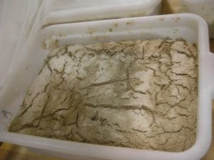 The rye flour dusted on top of the rye starter made it easy to see how developed the starter was