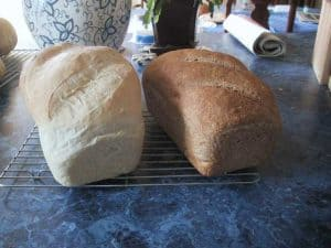 Comparing the baked whole wheat and white breads