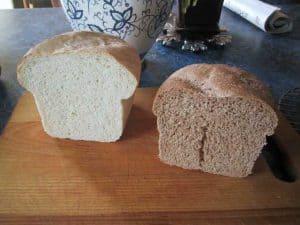 Whole wheat vs white bread, the cumb shot
