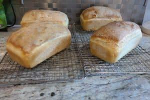 baguette loaf, hooked left, rolled right